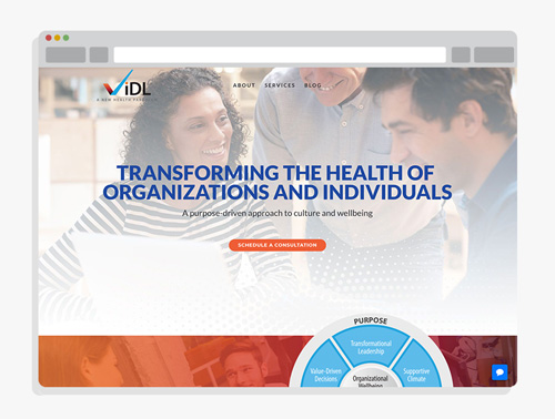 ViDL Solutions